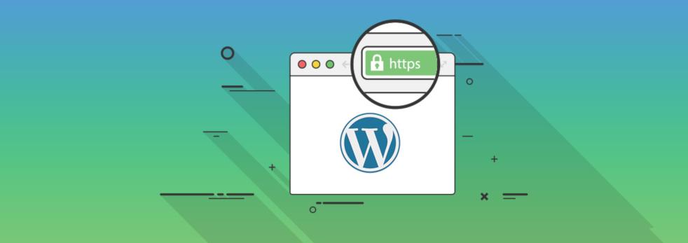 Custom Web Application Design